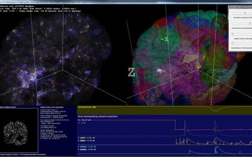 spikefun_wireframe2.jpg